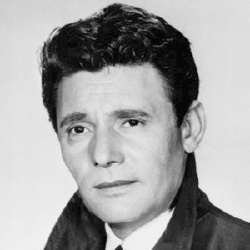 Harry Guardino - Acteur