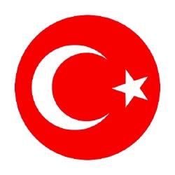 Equipe de Turquie de football - Equipe de Sport