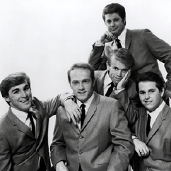 The Beach Boys - Musicien
