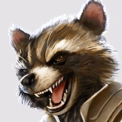 Rocket Racoon - Personnage d'animation