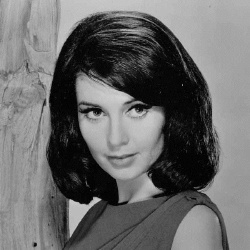 Anjanette Comer - Actrice
