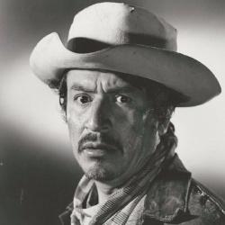 Alfonso Bedoya - Acteur
