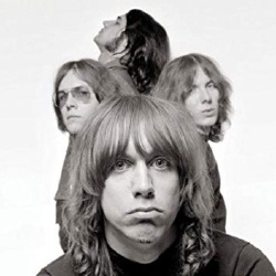 The Stooges - Groupe de Musique