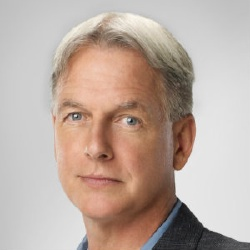 Mark Harmon - Acteur