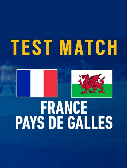 Rugby : Test-match - France - Pays de Galles