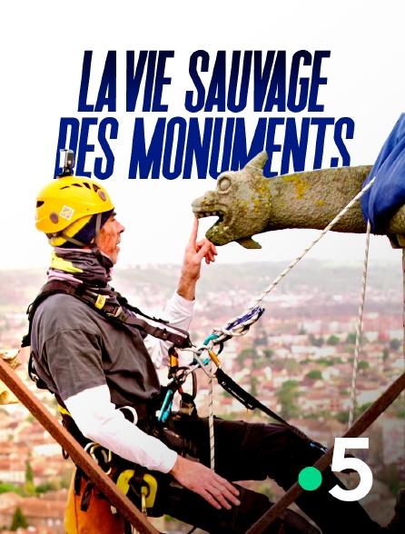 France 5 - La vie sauvage des monuments