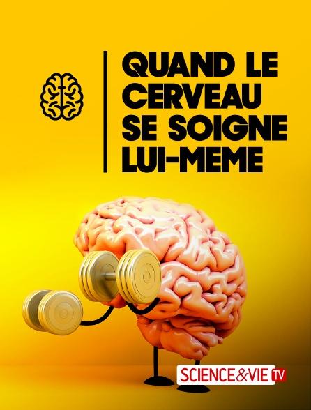 Science et Vie TV - Quand le cerveau se soigne lui-même
