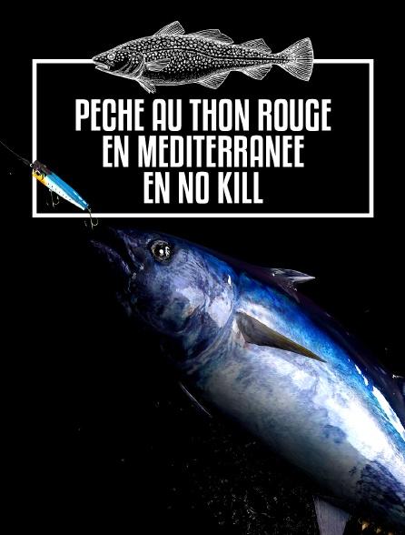 Pêche au thon rouge en Méditerranée en No Kill