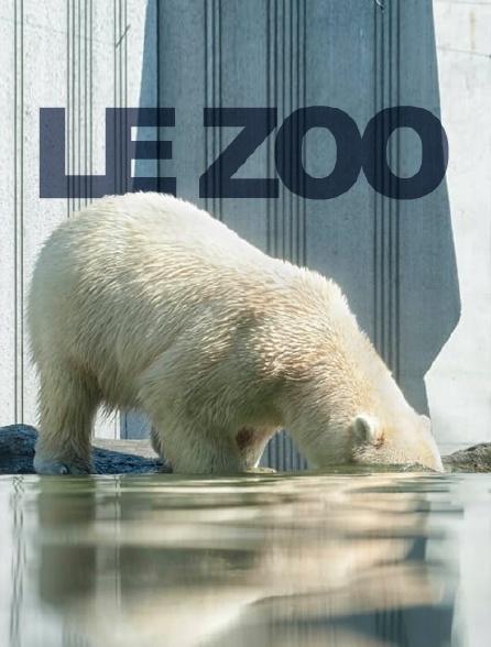 Le zoo du Bronx