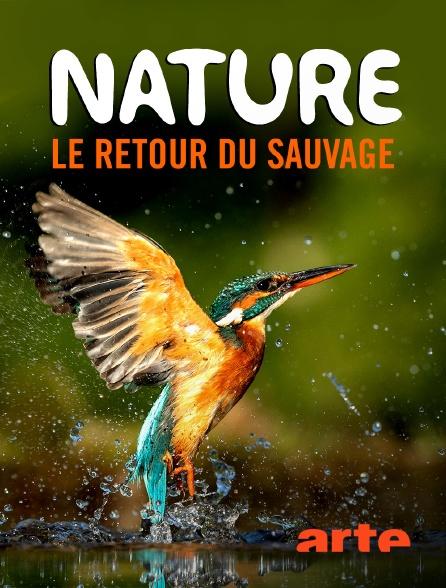 Arte - Nature, le retour du sauvage