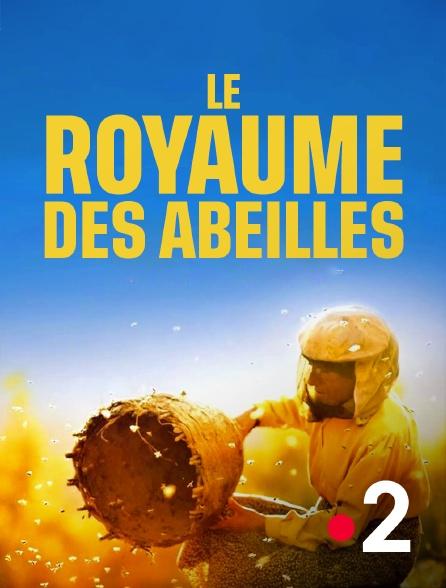 France 2 - Le royaume des abeilles