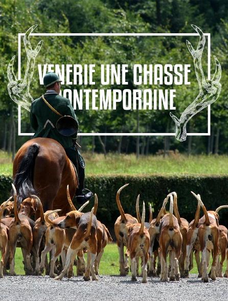 Vénerie, une chasse contemporaine