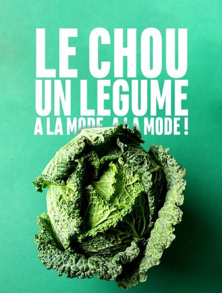 Le chou, un légume à la mode, à la mode !
