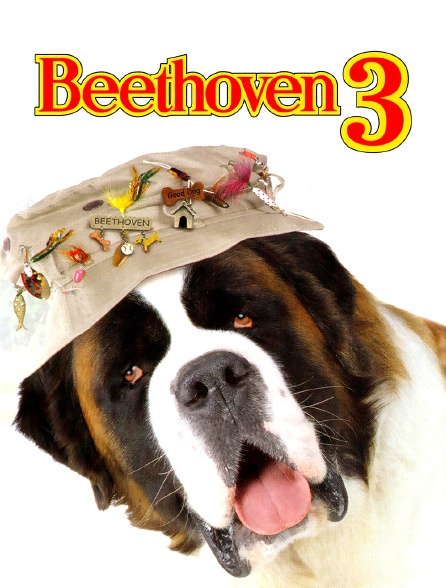 Beethoven 3