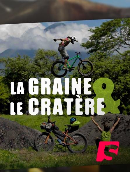 Spicee - La Graine et le Cratère