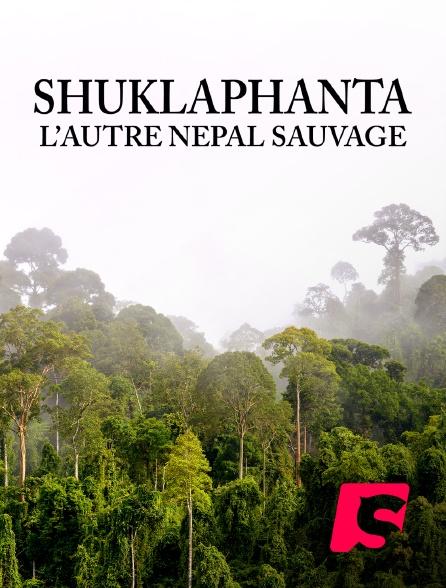 Spicee - Shuklaphanta, l'autre Népal sauvage