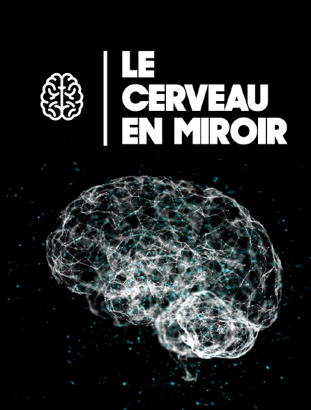 Le cerveau en miroir