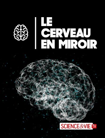 Science et Vie TV - Le cerveau en miroir