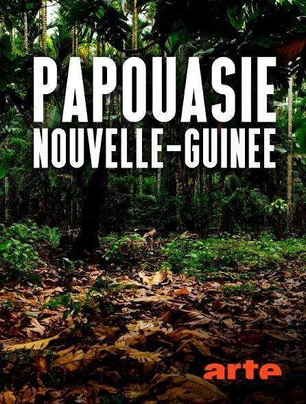 Arte - Papouasie-Nouvelle-Guinée : Jim & Jean au secours du kangourou arboricole