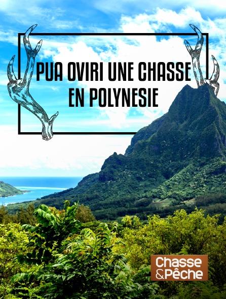 Chasse et pêche - Pua oviri, une chasse en Polynésie en replay