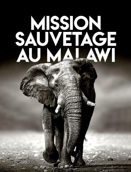 Mission sauvetage au Malawi