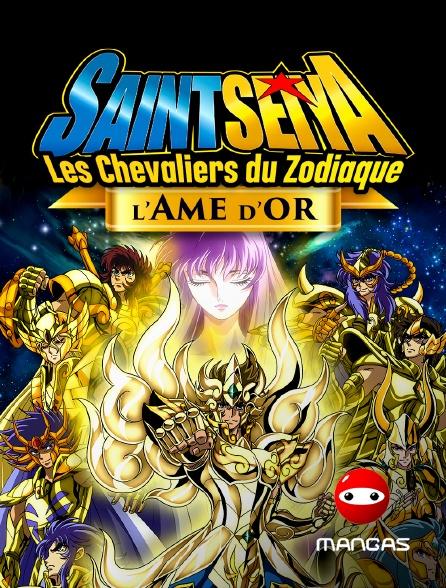 Mangas - Saint Seiya - Les chevaliers du Zodiaque : L'Âme d'Or