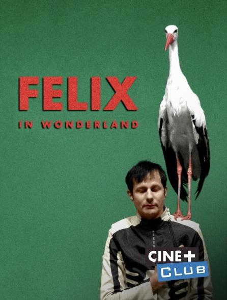 Ciné+ Club - Felix in Wonderland