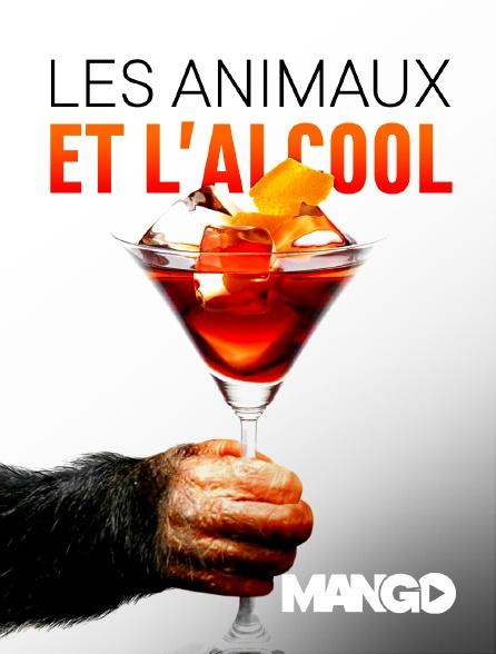 Mango - Les animaux et l'alcool