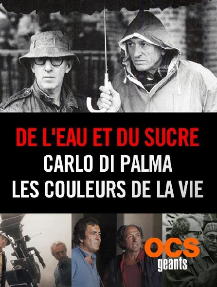 OCS Géants - De l'eau et du sucre : Carlo Di Palma, les couleurs de la vie