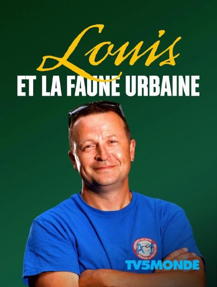TV5MONDE - Louis et la faune urbaine