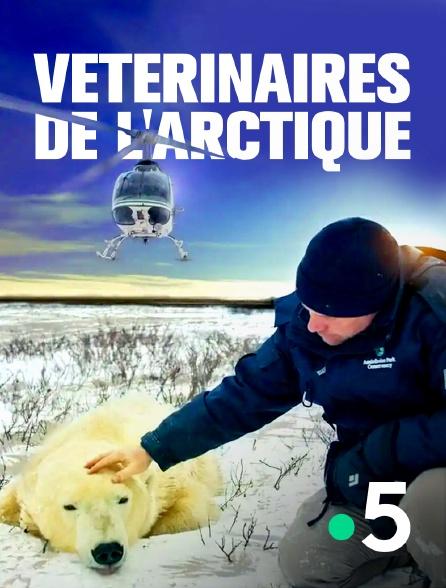 France 5 - Vétérinaires de l'Arctique