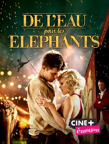 Ciné+ Emotion - De l'eau pour les éléphants