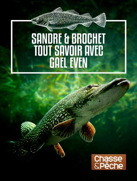 Chasse et pêche - Suivez le guide 3 : sandre & brochet tout savoir avec Gaël Even