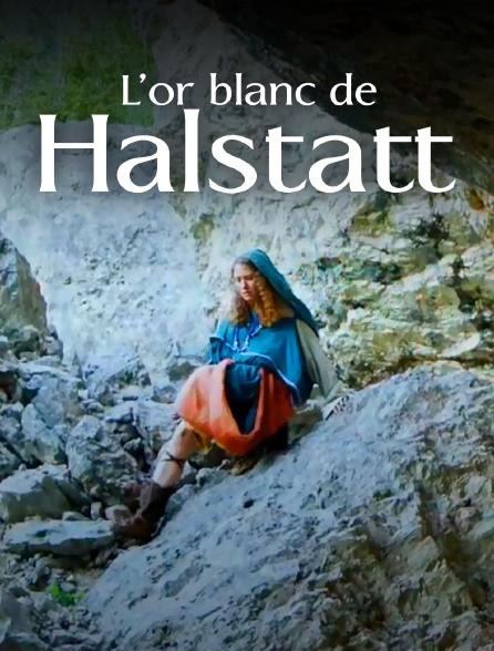 L'or blanc de Hallstatt : un trésor de la Préhistoire