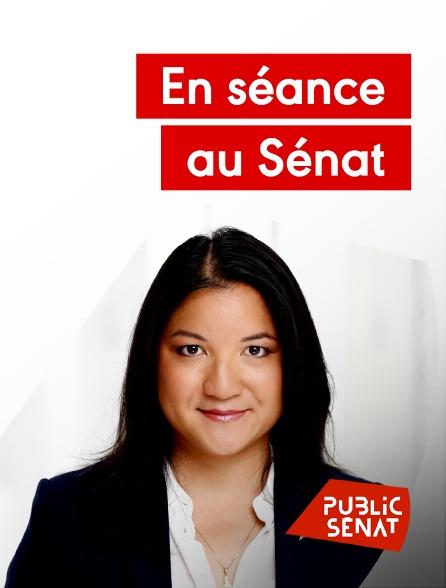 Public Sénat - En séance au Sénat en replay