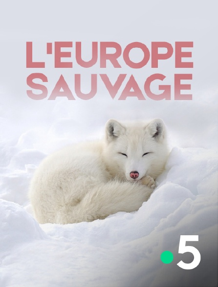 France 5 - L'Europe sauvage