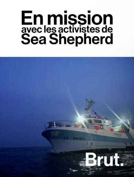 Brut - En mission avec les activistes de Sea Shepherd