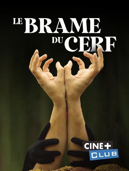 Ciné+ Club - Le brame du cerf