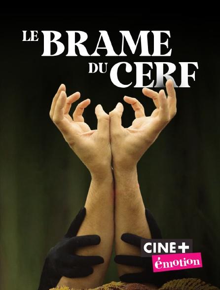 Ciné+ Emotion - Le brame du cerf