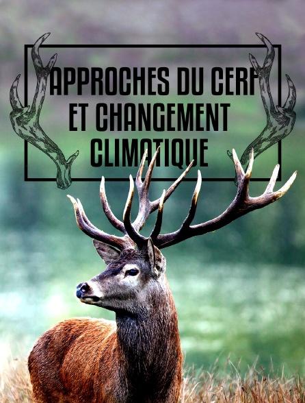 Approches du cerf et changement climatique
