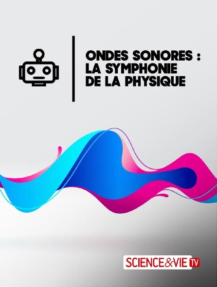 Science et Vie TV - Ondes sonores : la symphonie de la physique