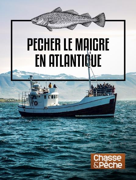 Chasse et pêche - Pêcher le maigre en atlantique