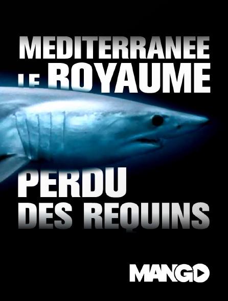 Mango - Méditerranée, le royaume perdu des requins