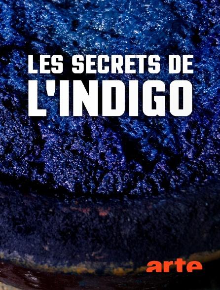 Arte - Les secrets de l'indigo