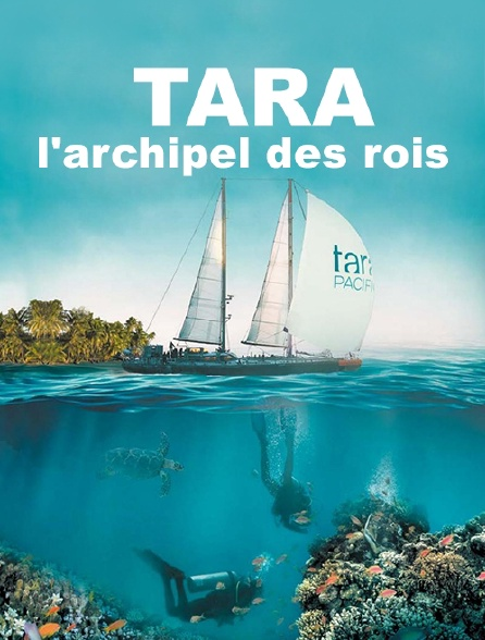 Tara, l'archipel des rois