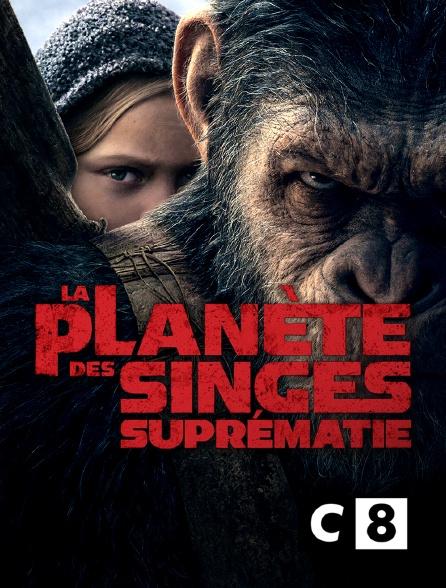 C8 - La planète des singes : suprématie