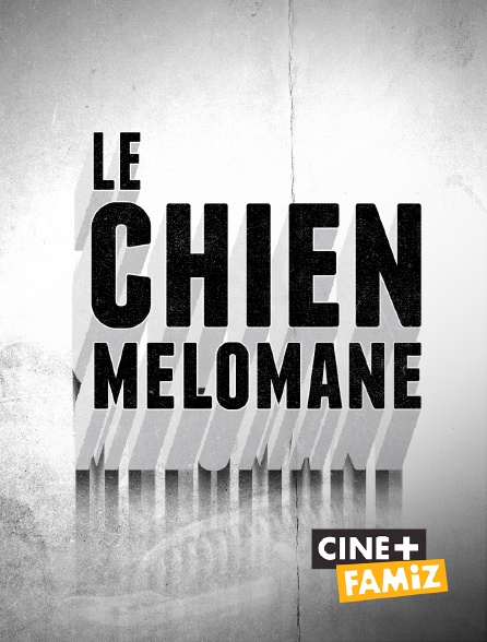 Ciné+ Famiz - Le chien mélomane