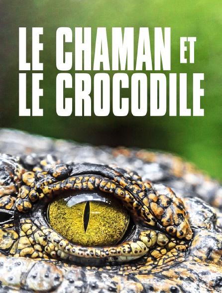Le chaman et le crocodile