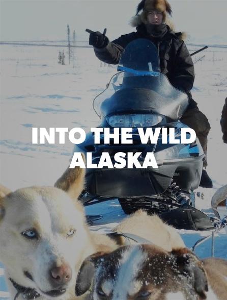 Into the Wild: Alaska