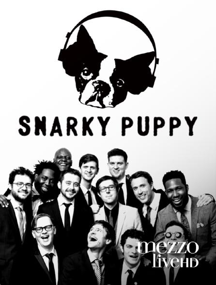 Mezzo Live HD - Snarky Puppy